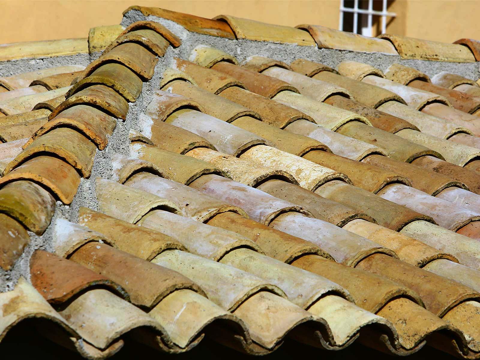 Protec Toiture : rénovation et entretien de toiture à ...
